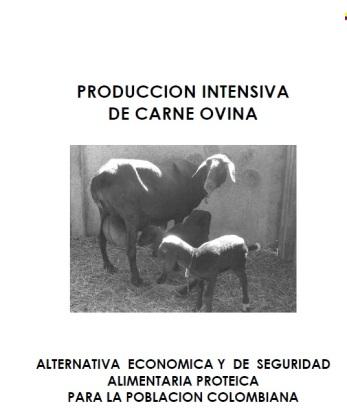 32. Produccion intensiva de carne ovina