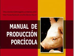 35. Manual porcino