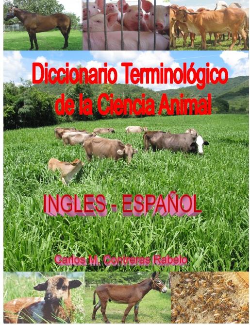 46. Diccionario terminológico