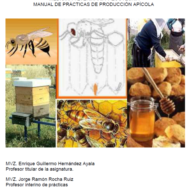 164. MANUAL DE PRÁCTICAS DE PRODUCCIÓN APÍCOLA