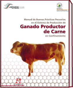 174.manual_bovino de carne