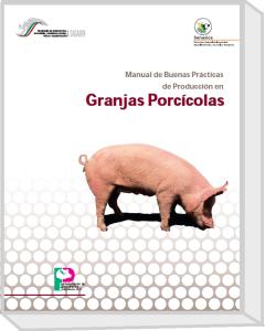 189.Manual de Buenas Practicas de produccion en granjas porcicolas