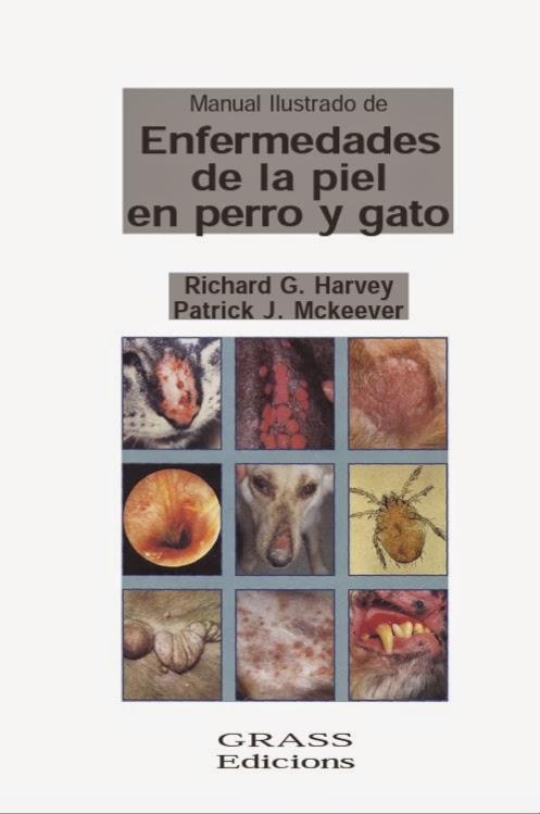 Enfermedades de la piel en perro y gato