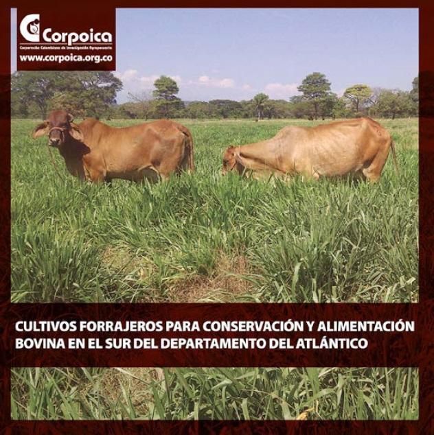 434. Cultivos forrajeros para conservacion y alimentacion bovina